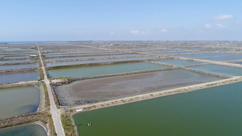 太陽能面板架設在魚池上!  Google在台完成亞洲首宗再生能源交易