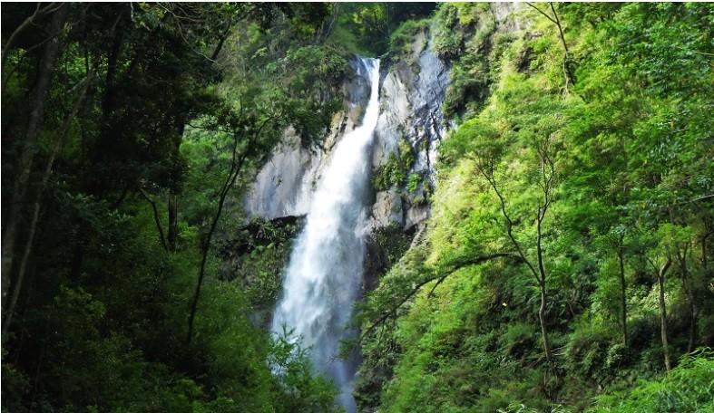 春節連假去哪兒? 全台國家森林遊樂區都是你的!