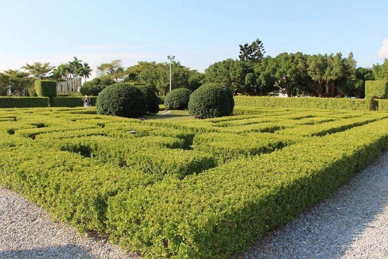 新生公園迷宮花園(圖/台北旅遊網)