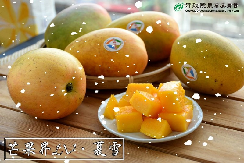 Taiwan-grown mango (Photo/FB Council of Agriculture)