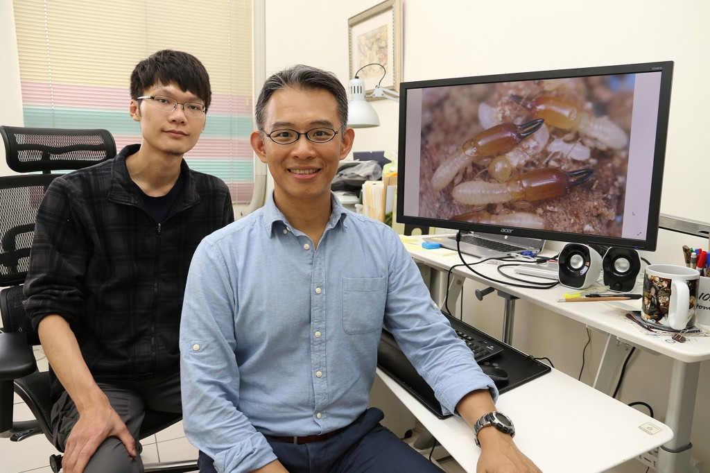 Assistant Professor Li Hou-feng (right) with Ph.D. student Liang Wei-ren and the new termite variety (photo from National Chung Hsing University).