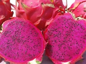 Dragon fruit (Image courtesy of Council of Agriculture)