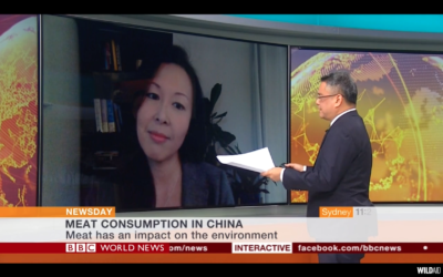 """Screenshot of """"BBC Interview: Chinese Meat Consumption"""". (photo courtesy of WildAid)"""
