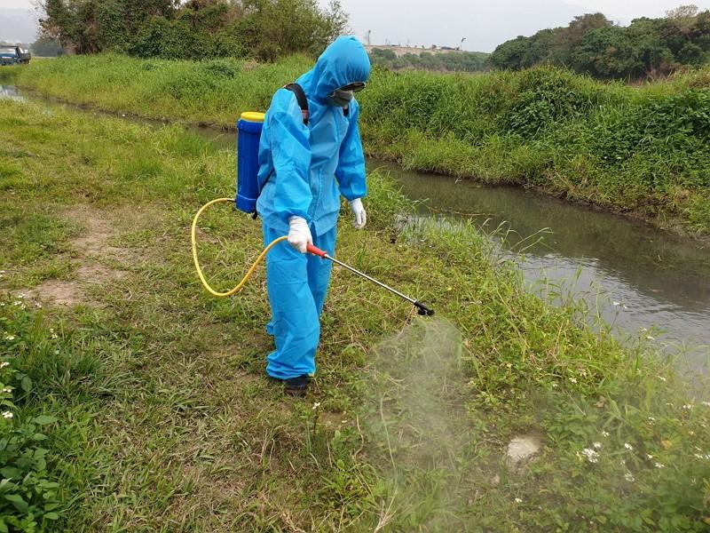 關渡自然公園漂流死雞之灌溉溝渠環境消毒(圖/動保處)