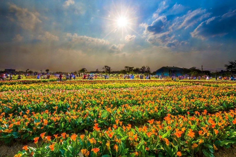 (photo courtesy of Taoyuan's Department of Tourism)