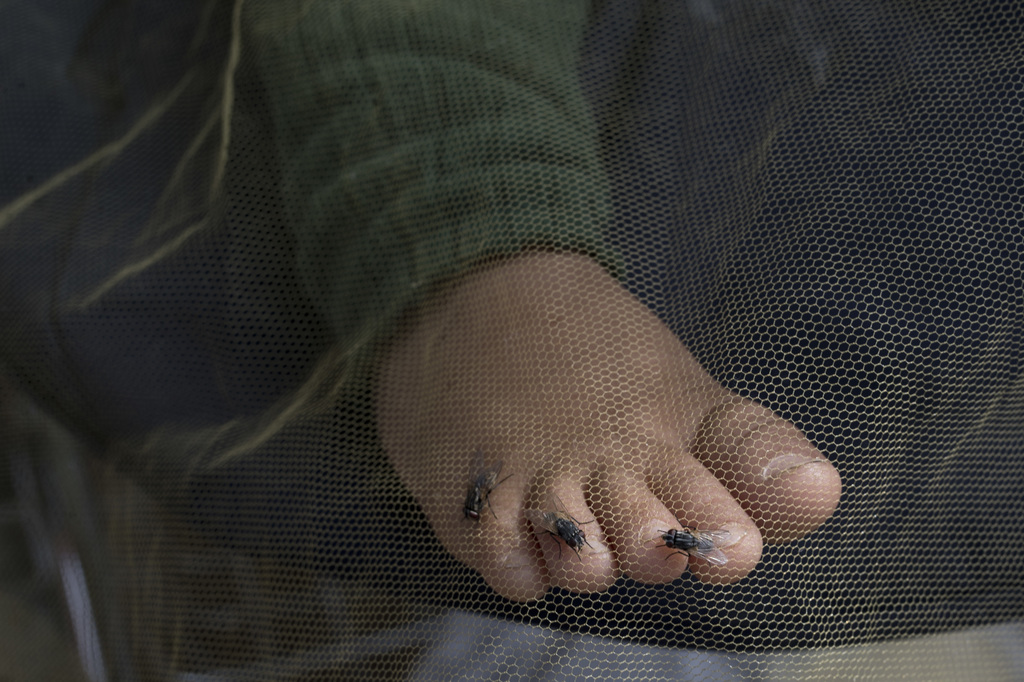 Flies sit on a child's toes as it sleeps on a stroller covered with a net at Ritsona refugee camp north of Athens, on Wednesday, Oct. 1...