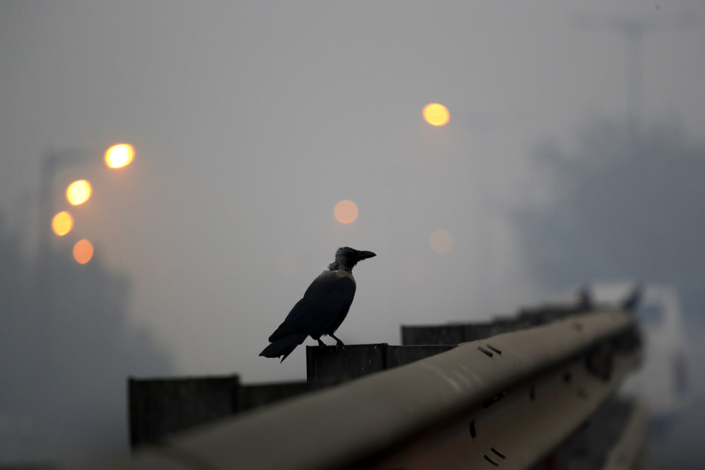A crow sits on the railing of an overpass enveloped by smoke and smog, on the morning following Diwali festival in New Delhi, India, Mo