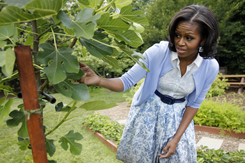 FILE - In this June 5, 2012, file photo, first lady Michelle Obama points out a fig tree as she talks about the White House Kitchen Gar...