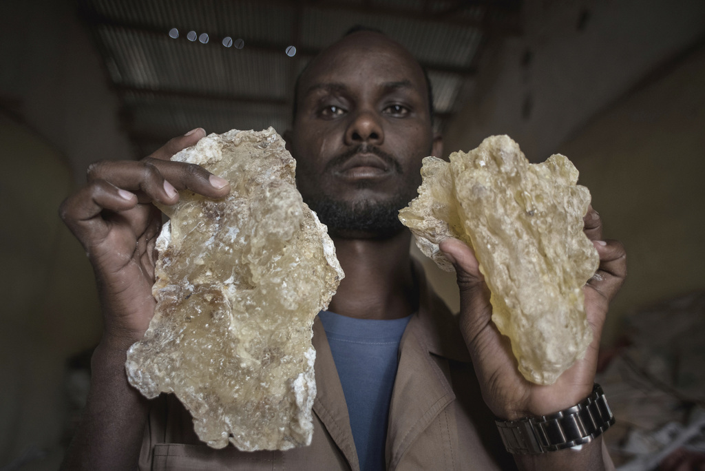 In this Saturday Aug. 6, 2016, photo, a man holds up two large tears of maydi, the large, most expensive chunks of frankincense resin, ...