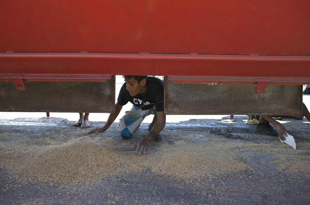 In this Nov. 14, 2016 photo, a young man collects rice that fell from a cargo truck waiting to enter the port and refill in Puerto Cabe...