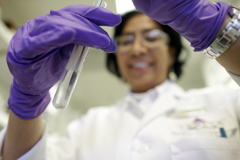 FILE - In this March 4, 2015, file photo, Viji Arumugam, a scientist at Vertex Pharmaceuticals Inc., works on a test in her laboratory ...