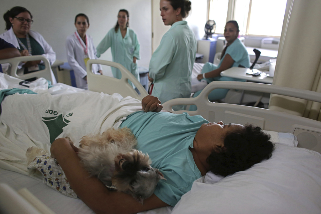 In this Nov. 17, 2016 photo, a Schnauzer dog named Paola lays with Jaqueline Castro, who is being treated for a degenerative disease, i...