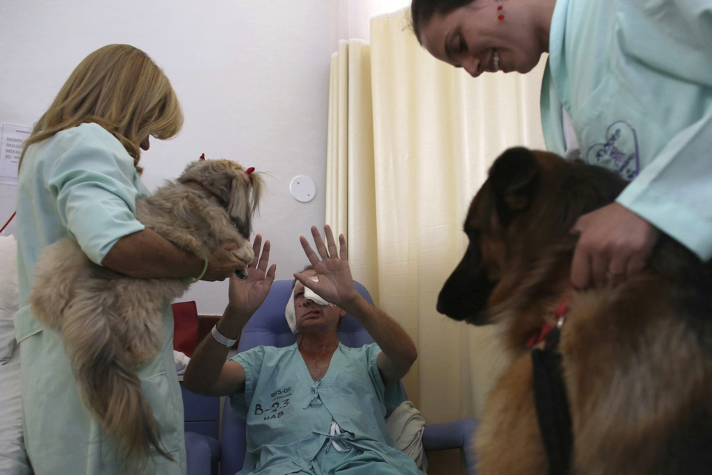 In this Nov. 17, 2016 photo, Euripedes Carreira, a 67-year-old being treated for cancer, interacts with a Shitzu dog named Mille and Ge...