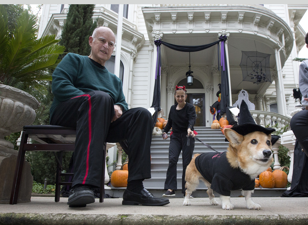 FILE - In this Oct. 31, 2016 file photo, California's first dog, Sutter, keeps an eye out for trick-or-treaters with his owners, Gov. J...