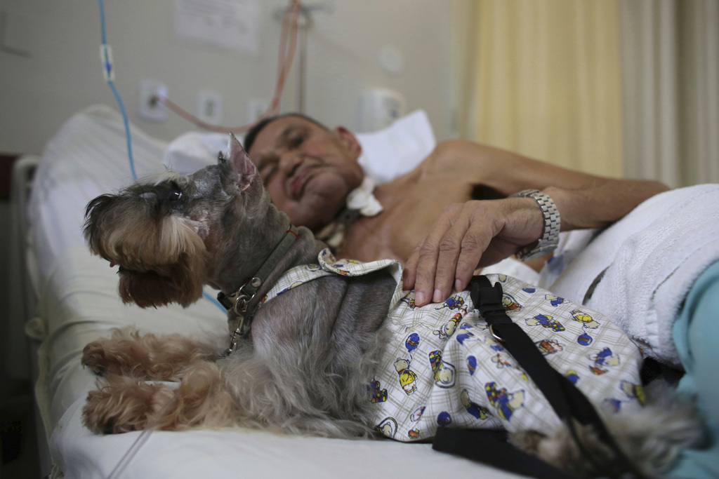 In this Nov. 17, 2016 photo, Nivaldo Lopes, a 60-year-old geriatric patient, pets a Schnauzer dog named Paola in his bed at the Support...