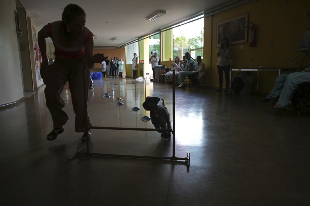In this Nov. 17, 2016 photo, Soraya Avila shows off her dog Raja running through an obstacle course set up in the hallway of the Suppor...