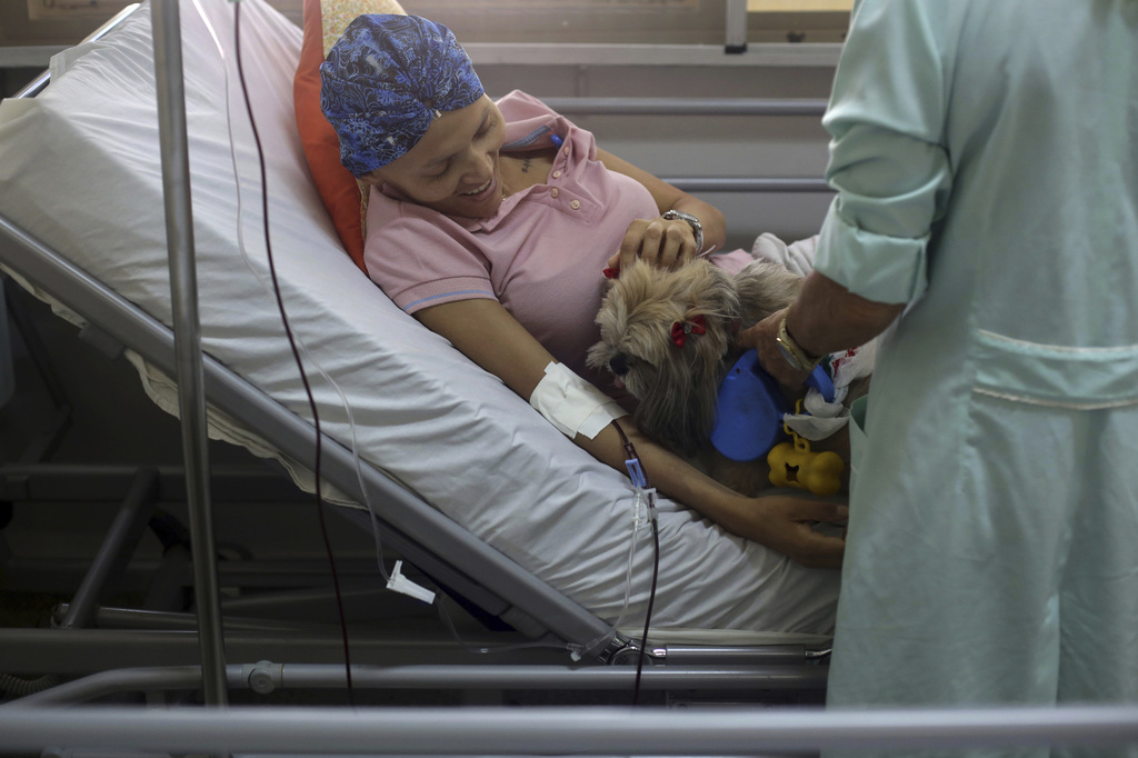 In this Nov. 17, 2016 photo, Herivania de Souza, a 30-year-old being treated for cancer, pets a Shitzu dog named Mille who visits her i...