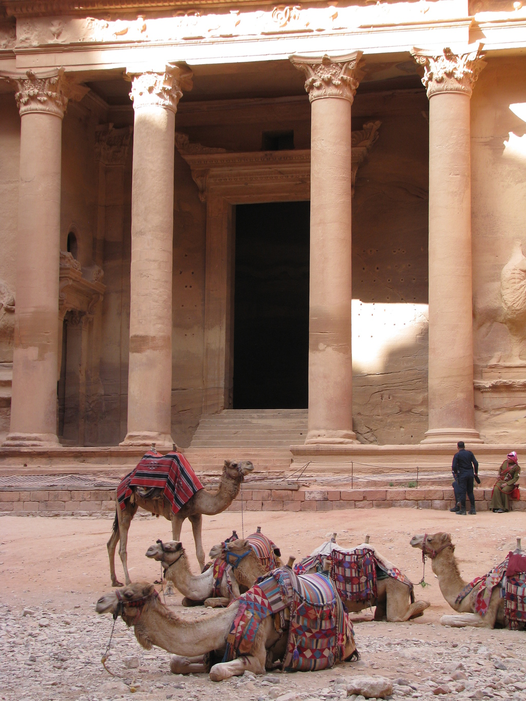 This April 23, 2016 photo shows camels in front of the Treasury building in Petra, the ancient rock-hewn city that is Jordan's blockbus...