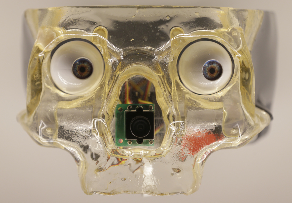 Artwork by Canadian Louis-Philippe Demers, which shows an artificial skull with robotic eyes which follows the motion of a visitor, dur...