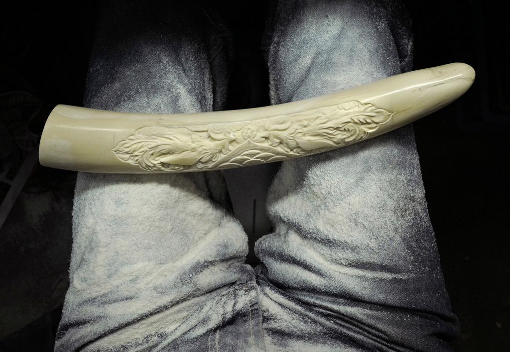 Hong Kong ivory trade faces uncertain future     | Taiwan News