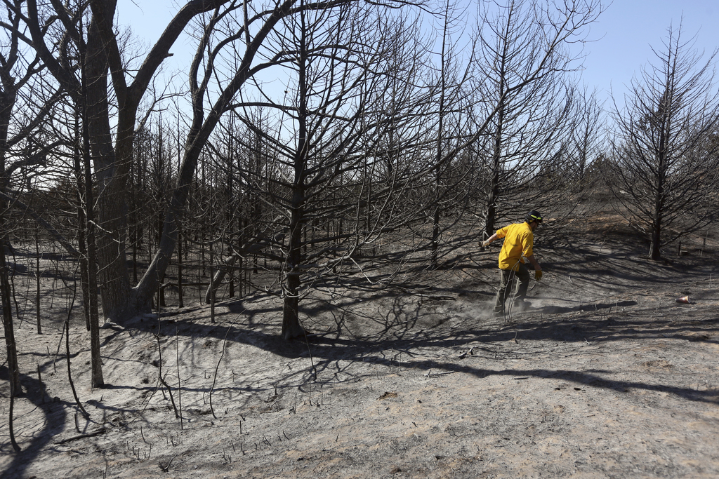 Travis Pohlman checks for hot spots in the trees along Dull Knife Drive in the Highlands community area north of Hutchinson, Kan., on M...