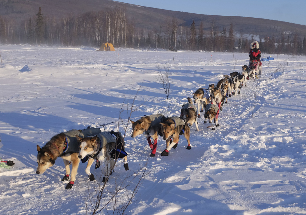 Aliy Zirkle departs the Manley Hot Springs checkpoint of the Iditarod Trail Sled Dog Race in  March 7, 2017. Zirkle was the sixth into ...