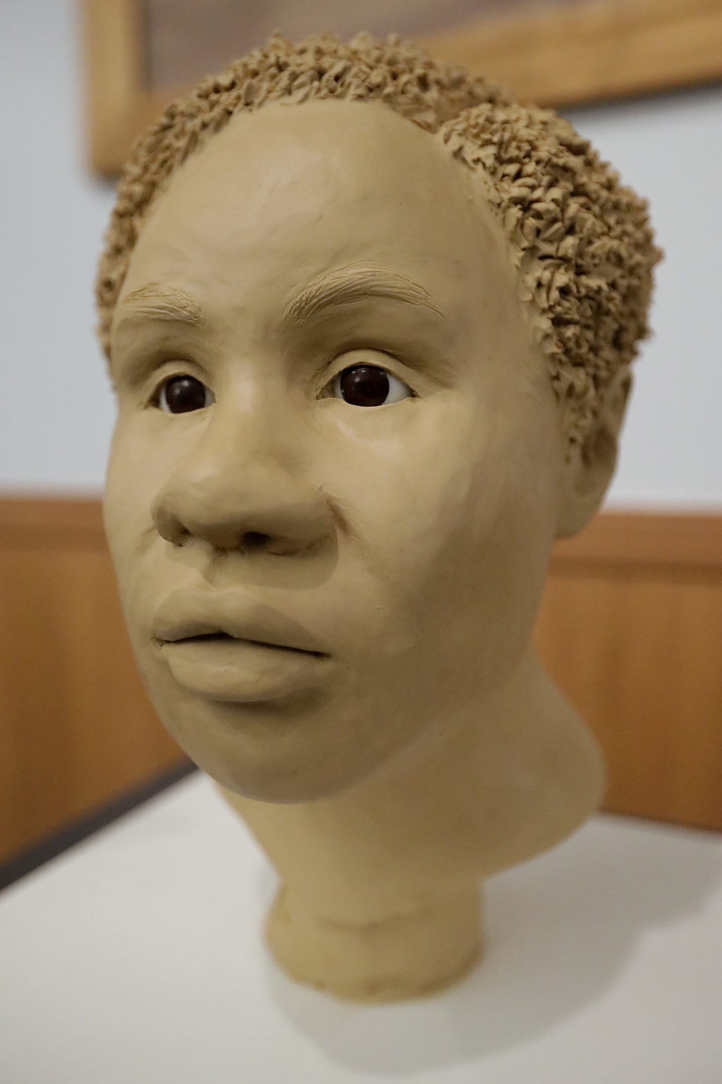 This Oct. 21, 2016 photo shows a forensic sculpture of an unidentified 1985 female murder victim during a forensic conference in Tampa,...