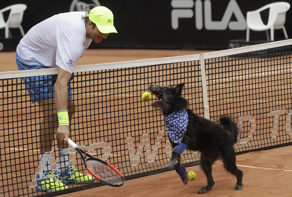 In this Saturday, March 4, 2017 photo, Brazilian tennis player Marcelo Demoliner plays with a shelter dog specially trained as a ball-r...