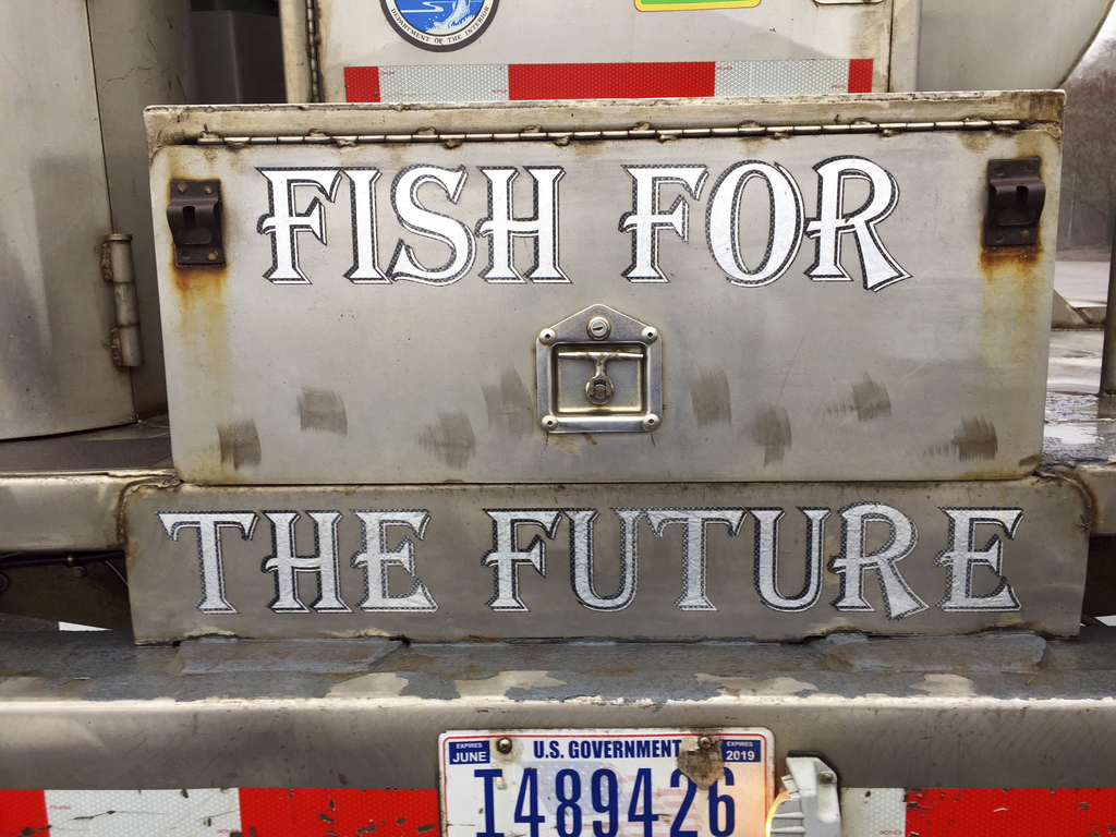 In this Thursday, March 9, 2017 photo, a sign adorns a water tanker truck holding hundreds of baby coho salmon at it arrived at the Los...