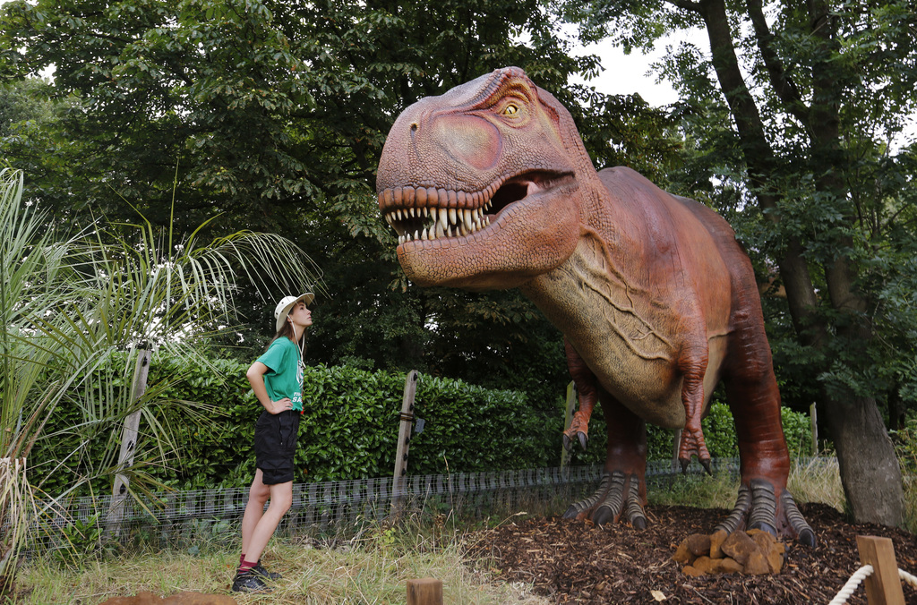 A tour guide poses with a replica of a T. Rex in London Zoo's new Time Travel Safari exhibit named Zoorassic Park in London, Thursday, July 20, 2017. ...
