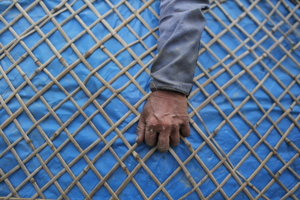 In this Wednesday, July 26, 2017, file photo, in a Nepalese farmer holds a Ghum, a traditional rain shield while she walks to work in a paddy field in...