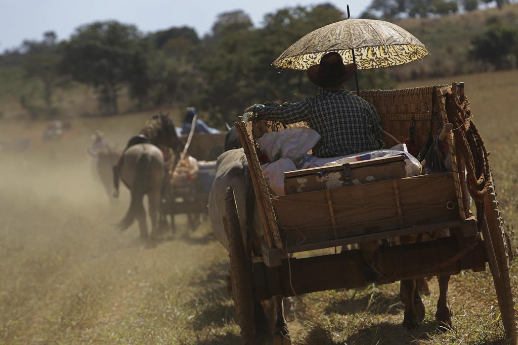 In this July 22, 2017 photo, a cowboy takes cover from the sun under an umbrella as he drives his ox cart through the Serra da Boa Vista, during the O...