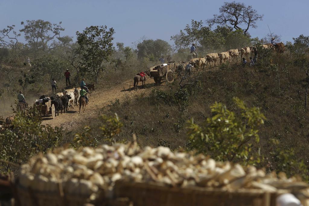 In this July 21, 2017 photo, ox carts climb the Serra da Boa Vista, during the Ox Cart Festival in Vazante, Minas Gerais state, Brazil. Apart from the...
