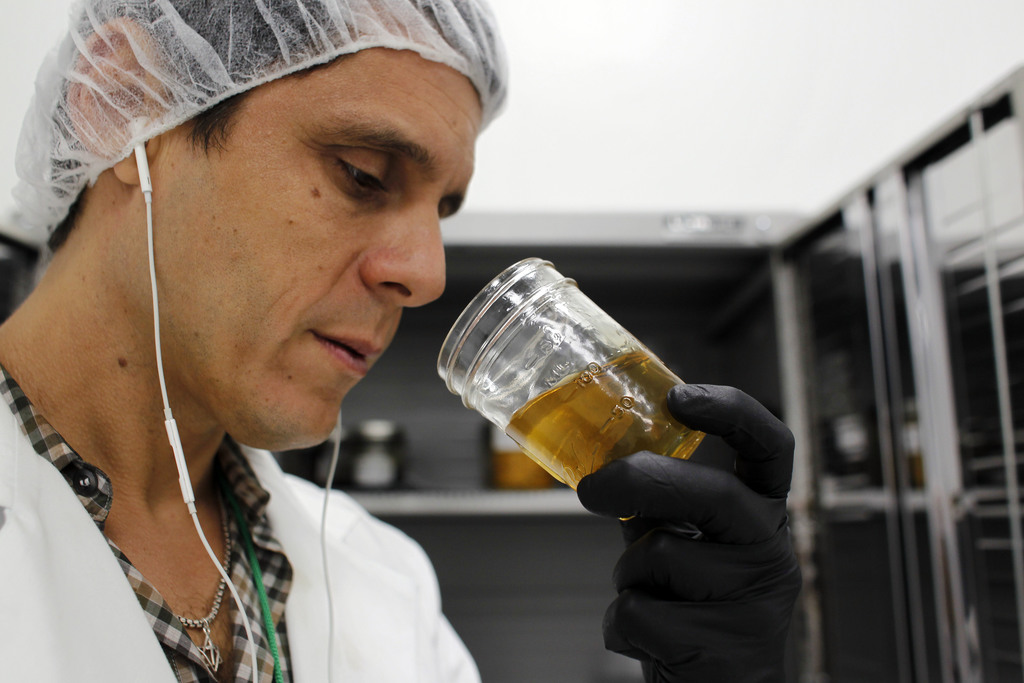 In this July 24, 2017 photo, Juan Manuel Rodriguez, an investor at Natural Ventures smells a jar of marijuana final product, in Caguas, Puerto Rico. N...