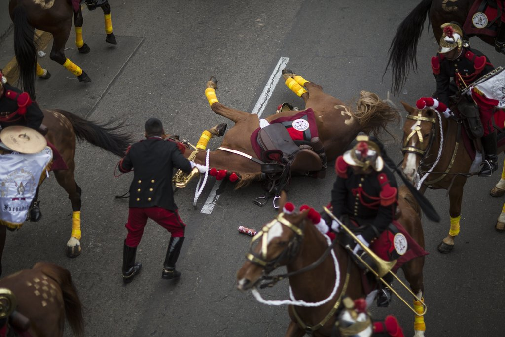 """In this Saturday, July 29, 2017 photo, a member of the traditional cavalry regiment known as the """"Husares de Junin"""" tends to his horse who inexplicabl..."""