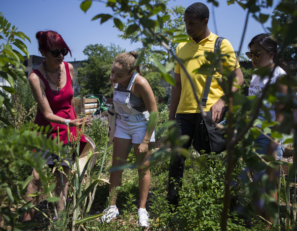 In this Aug. 1, 2017, photo, Amanda McDonald Crowley, center, shows Kickstarter interns swiss chard seeds that are grown in the Swale garden in New Yo...