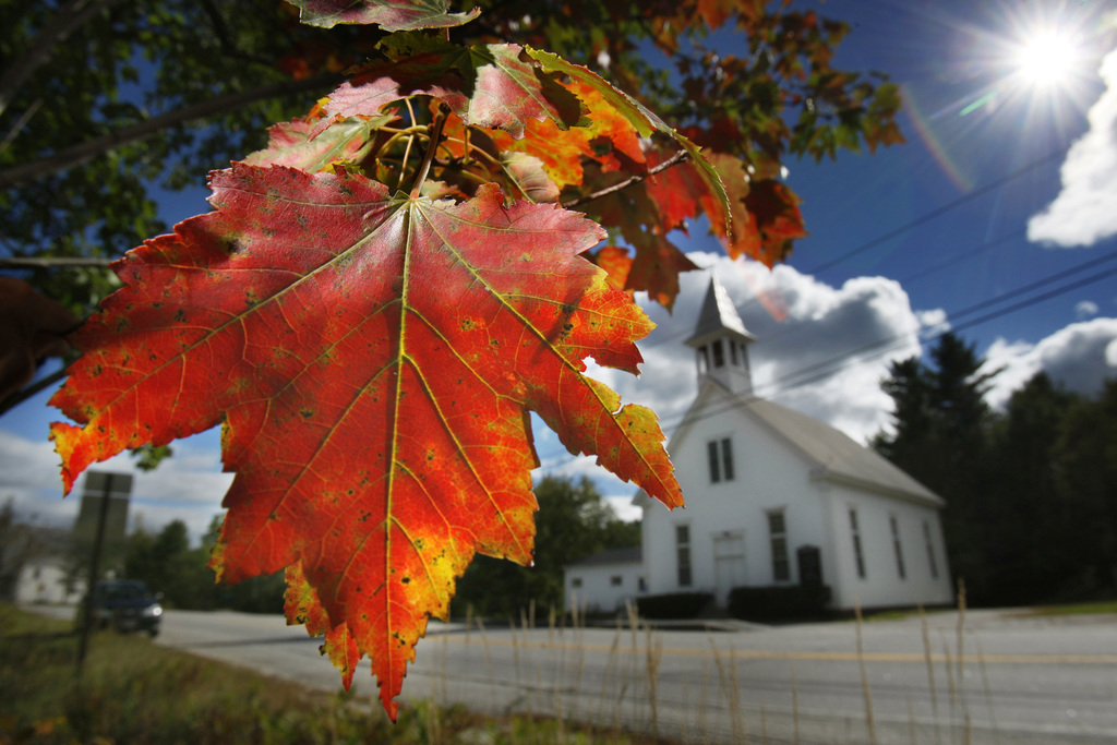 FILE - In this Sept. 17, 2010 file photo, a maple tree shows its fall colors in Woodstock, Maine. New England's 2017 fall foliage forecast is very fav