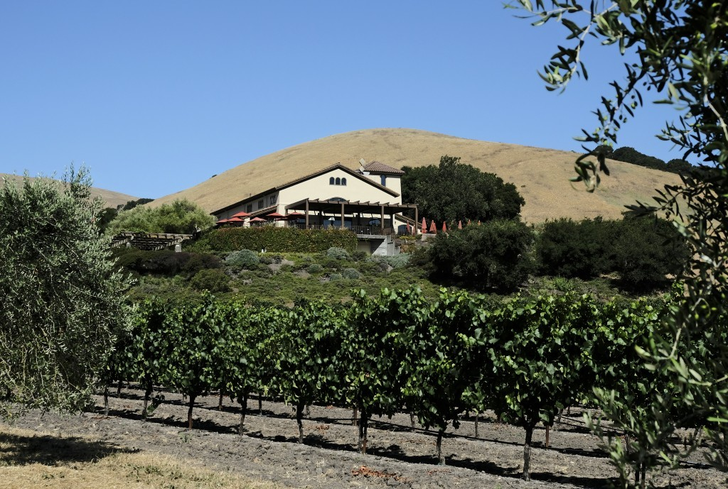 In this photo taken Monday, July 10, 2017, vineyards are seen below Gloria Ferrer Caves & Vineyards in Sonoma, Calif. The Ferrers have centuries of ex...