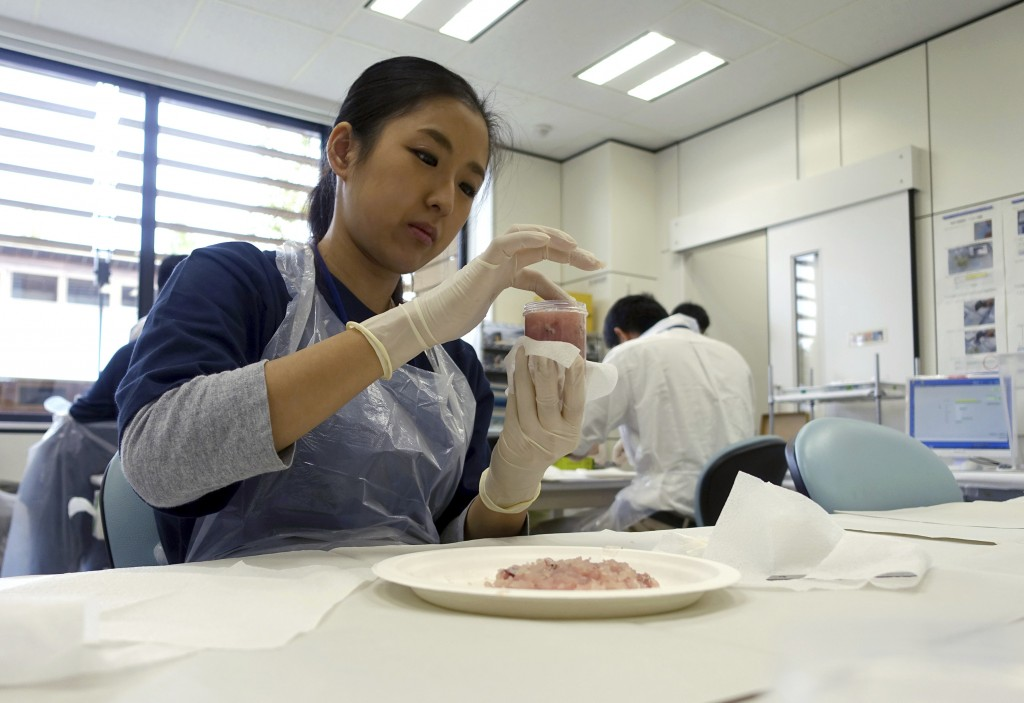 In this Oct. 11, 2017, photo, a lab technician at the Fukushima Agricultural Technology Center, which monitors safety in farm and fisheries products f