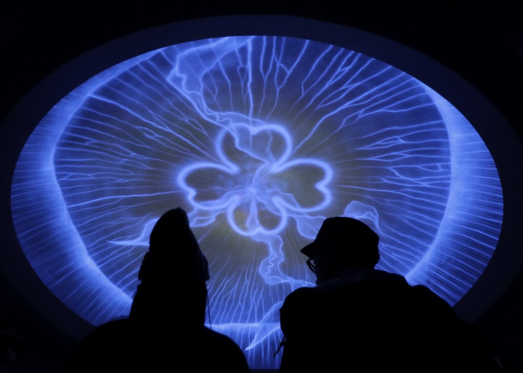 In this Sunday, Dec. 3, 2017, file photo, a couple watch the ceiling featuring  jellyfish at Enoshima aquarium in Fujisawa west of Tokyo. (AP Photo/Sh