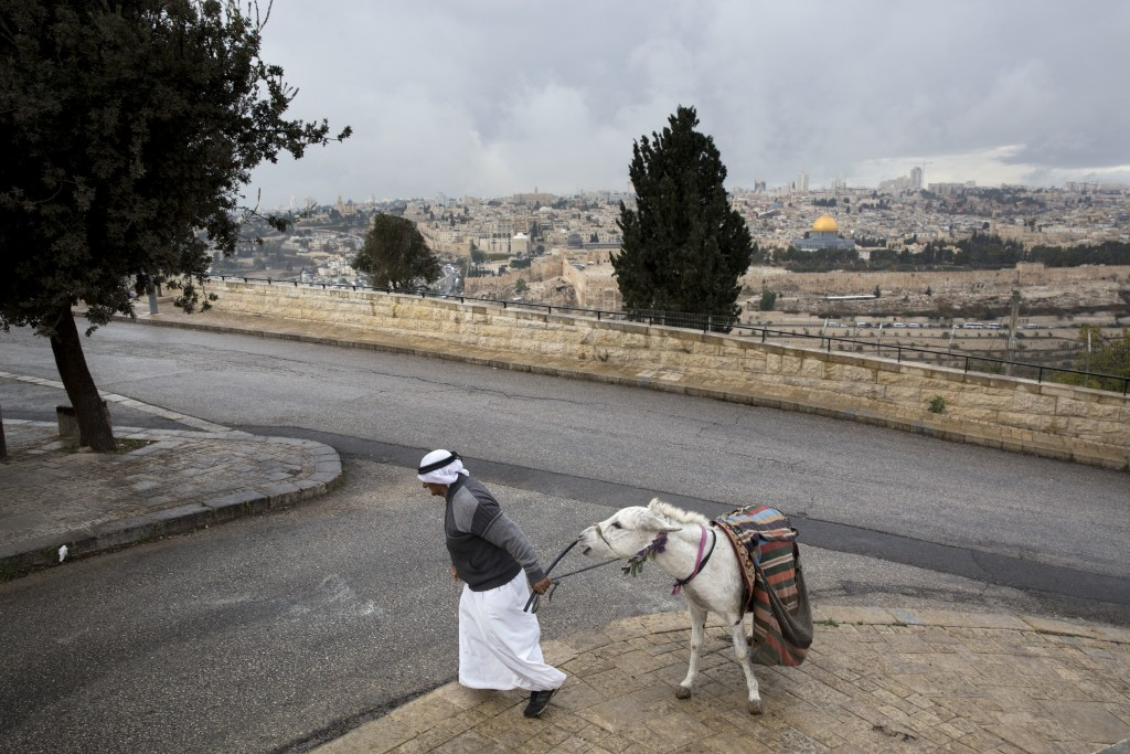 A Palestinian man walks with his donkey at Mount of Olives in Jerusalem, Wednesday, Dec. 6, 2017. U.S. officials say President Donald Trump will recog