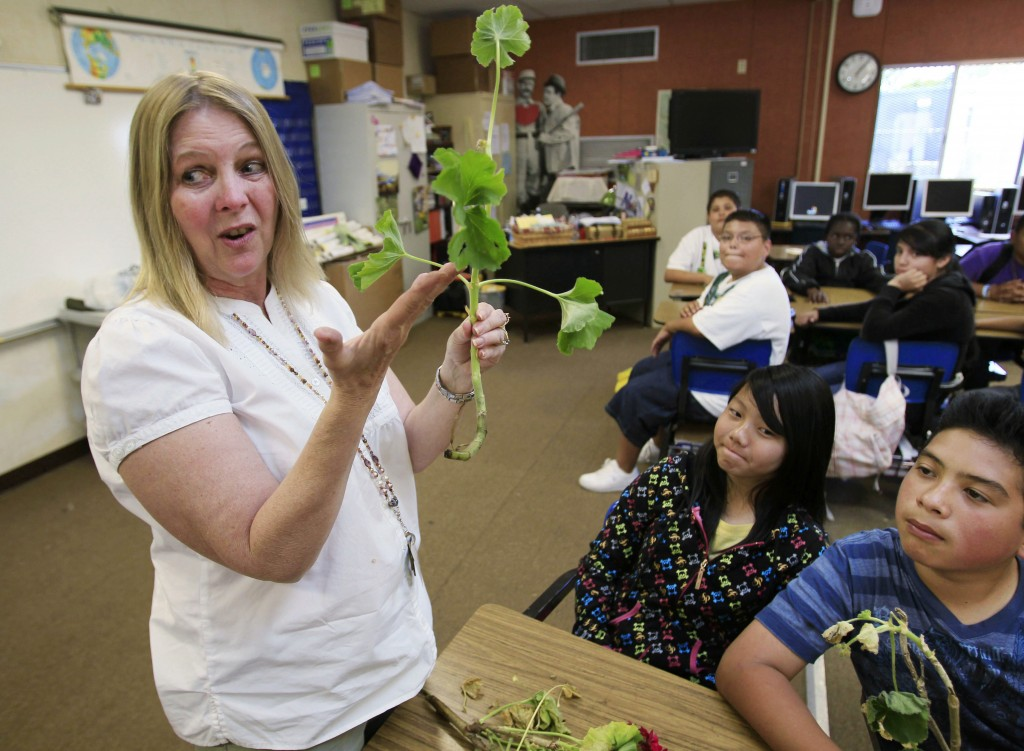 FILE - In this May 10, 2011, file photo, Van Buren Elementary school teacher Debra Keyes teaches a class in Stockton, Calif. A group of prominent lawy