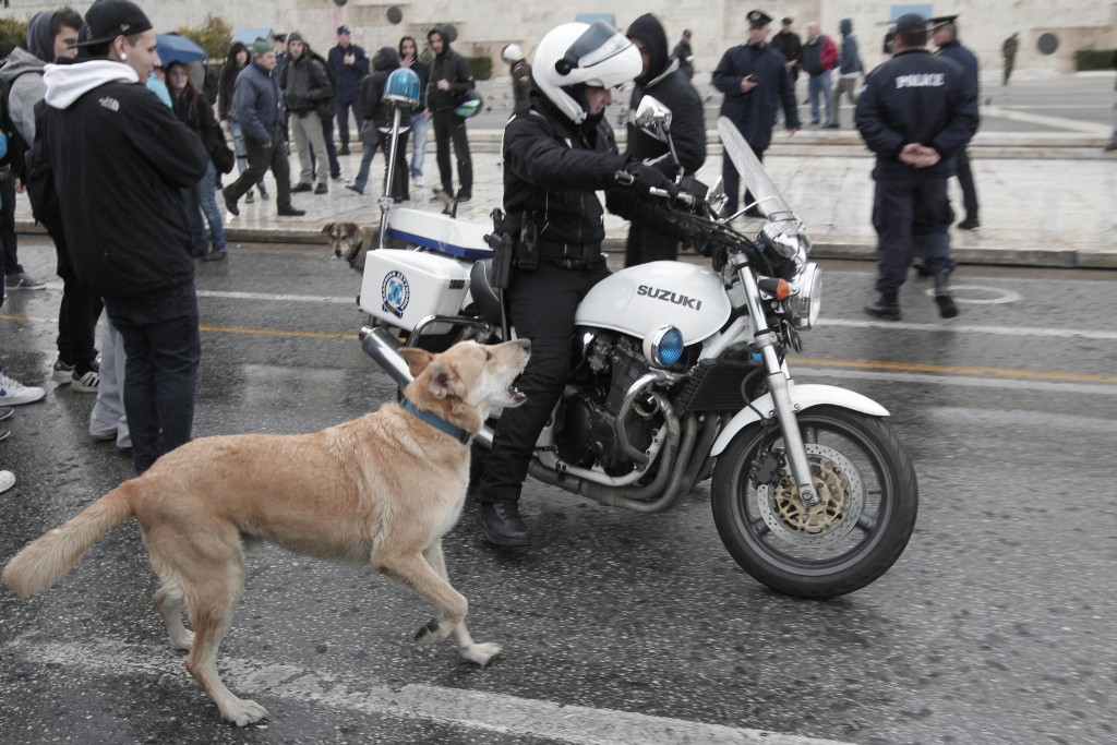 FILE - In this Feb. 20, 2012, file photo, a stray dog, called by protesters Loukanikos (Sausage), barks to a motorcyclist policeman as high school stu