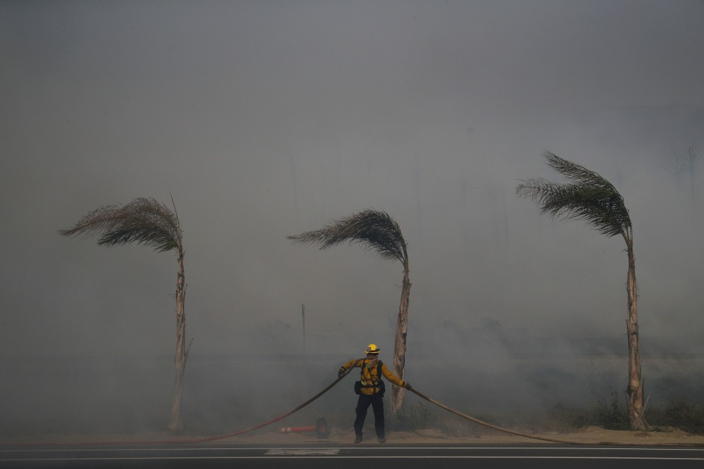 Palm trees sway in a gust of wind as a firefighter carries a water hose while battling a wildfire at Faria State Beach in Ventura, Calif., Thursday, D