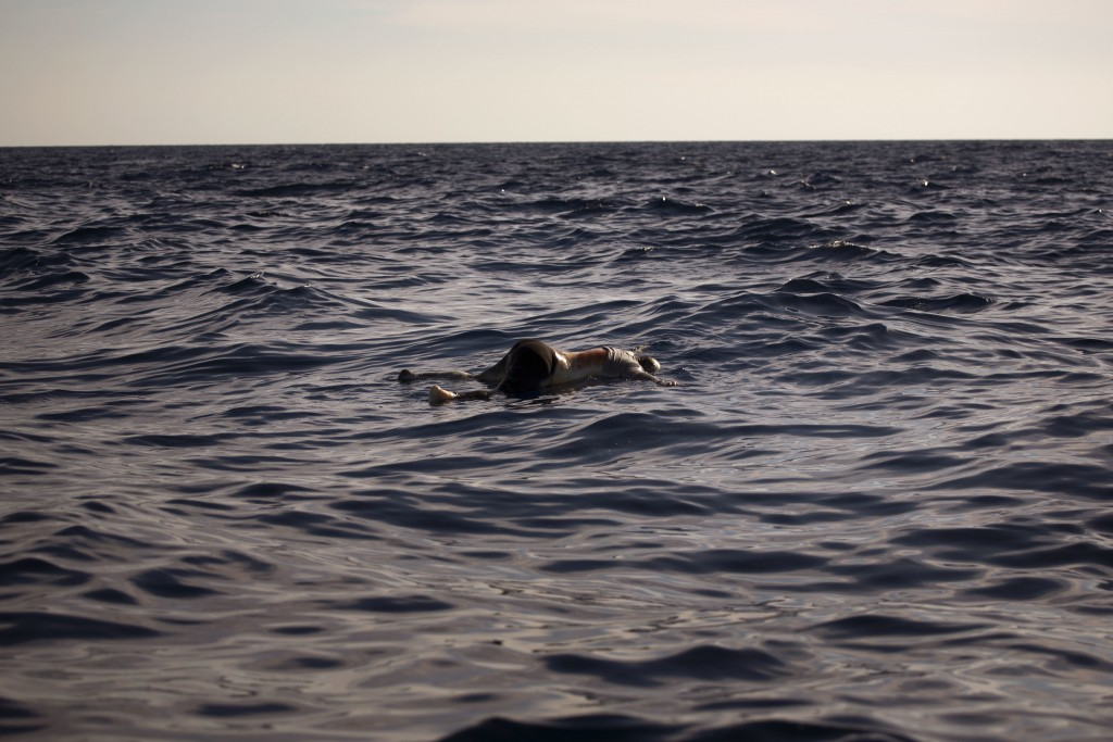 FILE - In this Wednesday, June 21, 2017 file photo a dead body of a woman is seen floating on the mediterranean sea, at 20 miles north of Zuwarah, Lib...