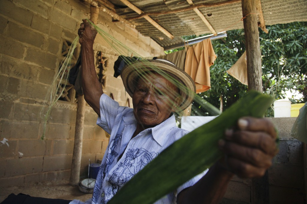 In this Saturday, Dec. 16, 2017 photo, Pasion Gutierrez, 81, extracts fibers from a plant to weave a traditional Panamanian pintao hat at his home in ...