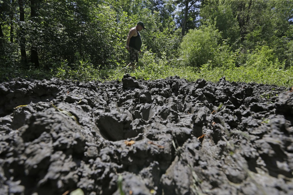 FILE - In this June 17, 2014, file photo, a wildlife trapper, walks past damage from feral hogs that happened overnight while foraging near one of his...
