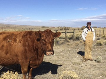 In this Friday, Oct. 13, 2017, photograph, rancher Tom Johnston is shown on his ranch near Pinedale, Wyo. Johnston, who ranches on nearly 1,800 leased...