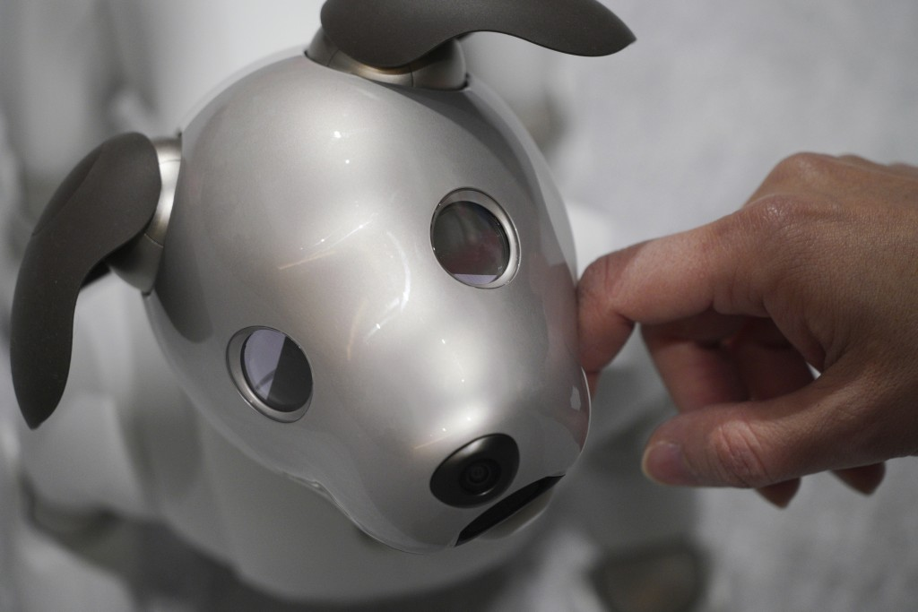 """In this Thursday, Jan. 11, 2018, file photo, a guest pets Sony's new Aibo robot at a Sony show room in Tokyo.  Sony launched """"aibo"""", a dog type pet ty"""