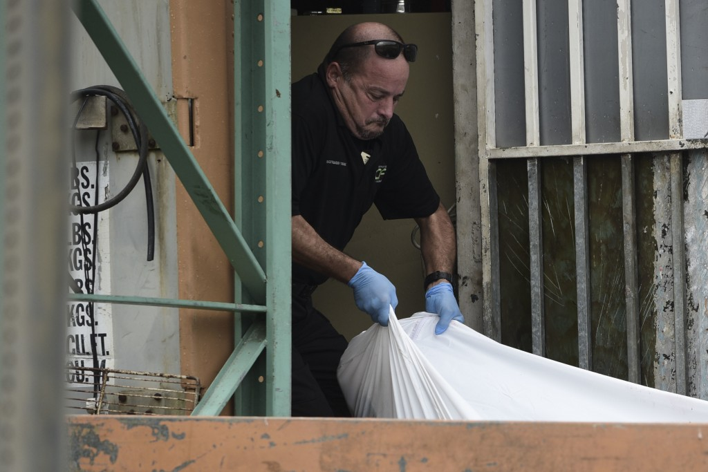 A forensic worker lifts a  a body at a crime scene, in San Juan, Puerto Rico, Thursday, Jan. 11, 2018 . As the island struggles to recover from Hurric